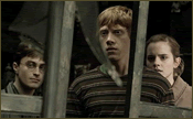 Deathly Hallows Snapshot