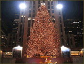 Christmas Tree at Rockefeller Centre